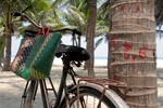 tropical bike, hoi a